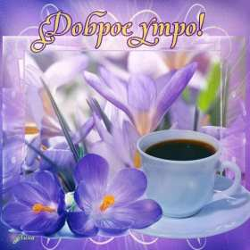 Открытка с добрым весенним утром,пожелания доброго весеннего утра Открытка картинка открытки картинки с пожеланиями доброго утра весеннего,доброе весеннее утро,с добрым весенним утром,открытка картинка доброе весеннее утро скачать