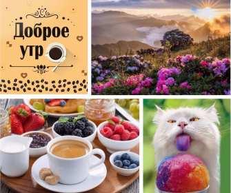 Открытка картинка летнее доброе утро,пожелания доброго утра  Открытка открытки картинка картинки с добрым летним утром ,красивые пожелания доброго летнего утра,яркие картинки открытки с добрым летним утром скачать бесплатно